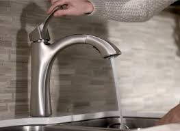 best pull out kitchen faucet best pull out kitchen faucet product reviews ratings