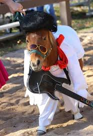 Hilarious Costumes These Hilarious Horse Halloween Costumes Are The Craziest Thing Ever