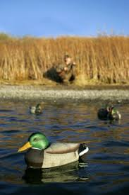 Floating Duck Blinds Photos Build Hunting Blinds For Ducks And Geese