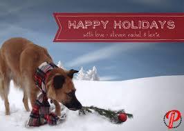 funny dog christmas card sayings christmas lights card and decore