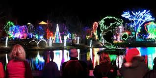 Detroit Zoo Wild Lights Pegge Sines Google