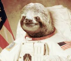 The Sloth Meme - astronaut sloth conquered the internet now he s going to the moon