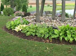 Rock Garden Plan by Hostas Border The Outer Edge Of This Rock Garden Wild Cherry