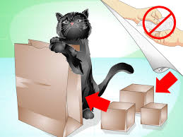 sofa that cats won t scratch 3 ways to train your cat not to scratch the furniture wikihow