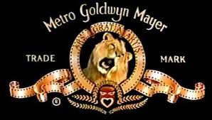 mgm lion killed trainer