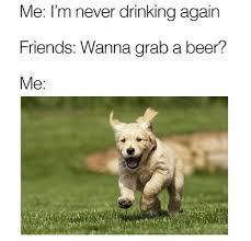 Meme Dog - beer dog meme meme rewards