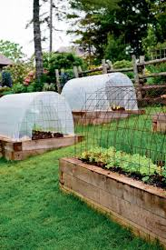 best 25 hillside garden ideas only on pinterest sloping garden niki jabbour the year round veggie gardener mini hoop tunnels in summer