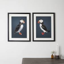 atlantic puffins pair of prints by lucy coggle
