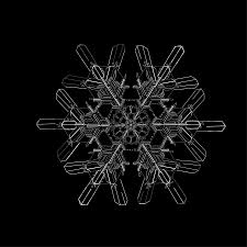 snowflake wilson bentley animated snowflakes help tell the story of their creation uaf