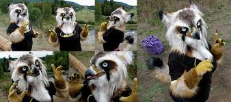 australian shepherd fursuit lynx gryphon partial by crystumes on deviantart