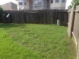 pokie u0027s backyard play land u2013 sajan abraham