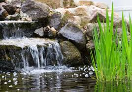 designing and maintaining outdoor water features best pick reports