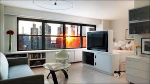 apartments fabulous one bedroom apartment interior design