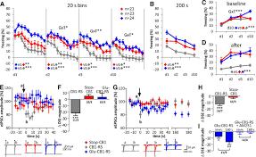 cannabinoid cb1 receptor in dorsal telencephalic glutamatergic