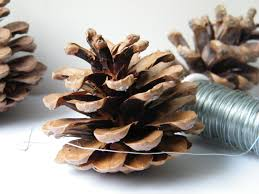 wiring pine cones to make christmas decorations dried flower crafts