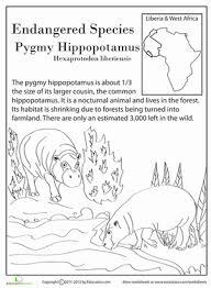 13 endangered species 4th grade worksheets education com
