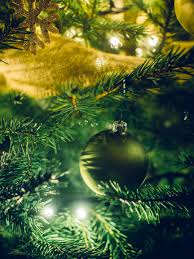 Pictures Of Christmas Lights by Free Stock Photo Of Christmas Lights Christmas Tree Close Up