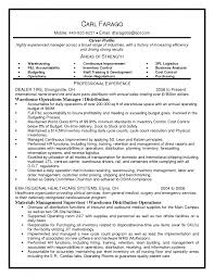 Resume Profile Sample 7 Best Sample Resumes Images On Pinterest Inventory Manager