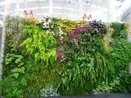 22 best living walls of plants images on pinterest vertical