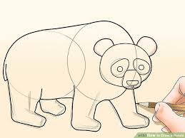 draw panda pictures wikihow
