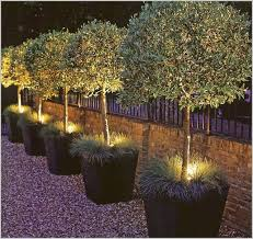 Outdoor Up Lighting For Trees Outdoor Up Lighting For Trees Reviews Industrial Table Ls
