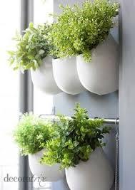plante aromatique cuisine plante aromatique cuisine meilleur mur végétal et autre jardin