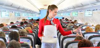 Flight Attendant Job Description For Resume by Flight Attendant Job Description