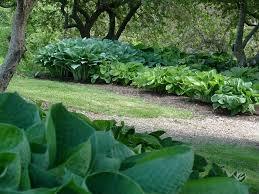 Botanical Gardens Images by University Of Idaho Arboretum U0026 Botanical Garden