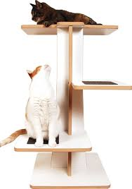 Modern Cat Tree Acacia Cat Tree By Square Cat Habitat Apartment Stuff