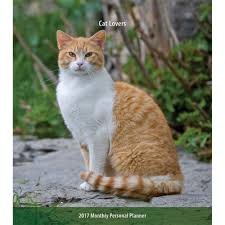 cat lovers softcover monthly planner 9781465082282 calendars com