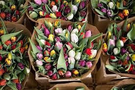ship flowers how to ship flowers herbs plants i e news events
