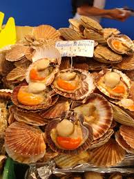 cuisine coquille jacques file coquilles jacques jpg wikimedia commons