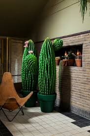 528 best cactus images on pinterest cactus plants and faux plants