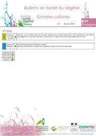 chambre r ionale d agriculture bretagne calaméo bsv n4 du 06 03 18
