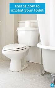 best 25 clogged toilet ideas on pinterest unclog tub drain diy