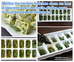 conservation plat cuisiné enfin une astuce pour conserver les herbes fraîches éternellement