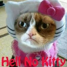 Original Grumpy Cat Meme - a grumpy cat hello kitty dump a day