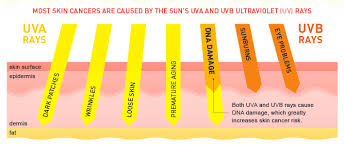 Do Tanning Beds Cause Cancer Sq Online The Dangers Behind The Golden Tan