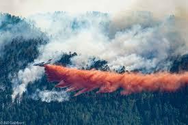 Wild Fire Near Billings Mt by Firefighters To Begin Firing Operations On Crow Peak Fire Near