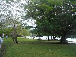 lonnoc beach bungalows hog harbour vanuatu booking com