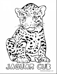 jaguar coloring pages alric coloring pages