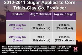 on farm research results sugar applications to corn and soybeans