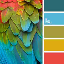 102 best color combination inspiration and ideas images on