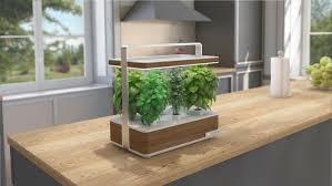 potager pour cuisine mettez vous au vert avec basile le potager aromatique d intérieur