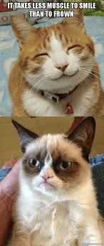 Frowning Meme - it takes less muscle to smile than to frown grumpy cat vs happy