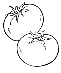 vegetables tomato vegetable coloring pages pinterest