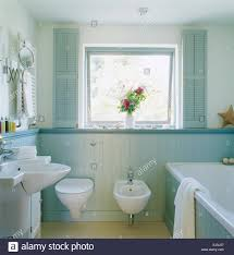 pale blue shutters on window above toilet and bidet in country