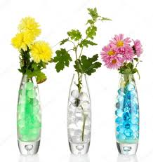 Flowers In Vases Pictures Beautiful Flowers In Vases With Hydrogel Isolated On White U2014 Stock