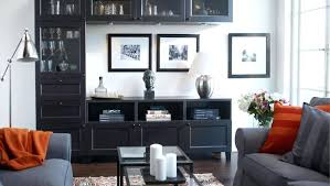 home design and decor reviews ikea cabinets living room living room stunning images of storage
