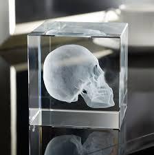 Skull Decor 40 Skull Decor Examples